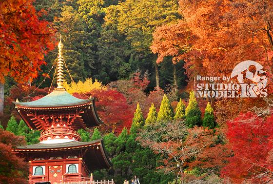 Autumn09.jpg