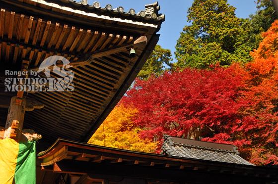 Autumn09 (3).jpg
