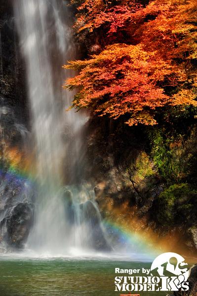 Autumn09 (9).jpg