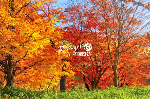 RAN_5072.jpg