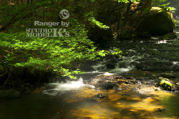 Ranger's-n (1).jpg